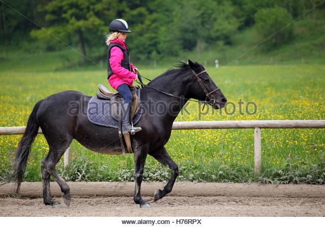 equitation-sports-h76rpx