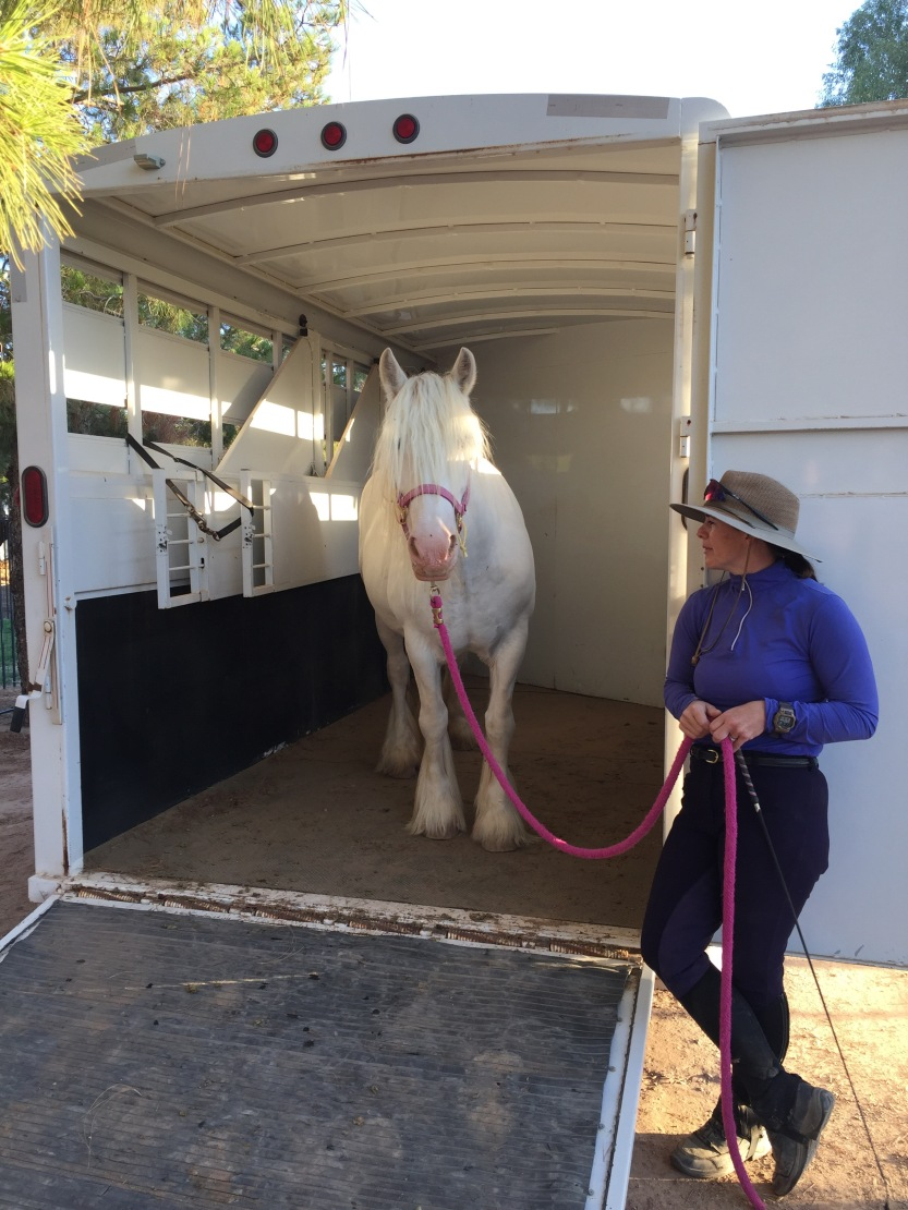 trailer loading training